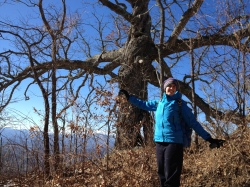 Margot mimicking a stately old oak on the trail.
